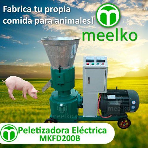 3- MKFD200B - PIG