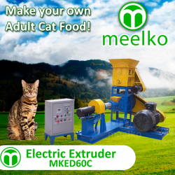 1- MKED60C - ADULT  CAT_preview